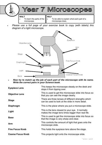 31 Microscope Mania Worksheet Answers - Worksheet Resource ...