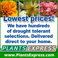 Lowest Prices! We have hundreds of drought tolerant selections. Delivered direct to your home.