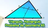 Problema de Geometría 65: Triangulo Rectángulo, Puntos medios de Hipotenusas, Distancia.