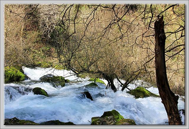 5 Nacimiento del río Cadagua