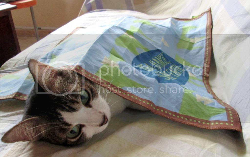 photo InnisfreeEcoHandkerchief06.jpg