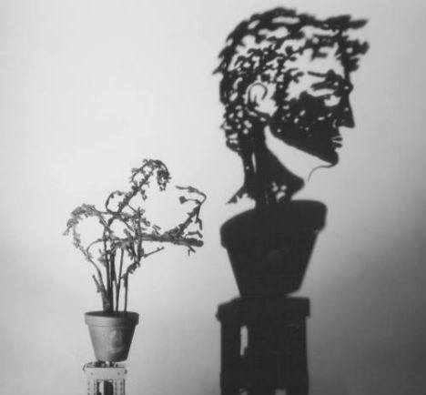 Wiegman Shadow Sculptures 4