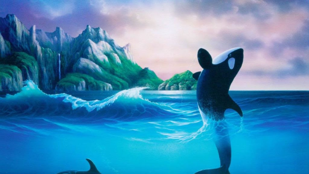 30 Beautiful Killer Whale Pictures and HD Wallpapers