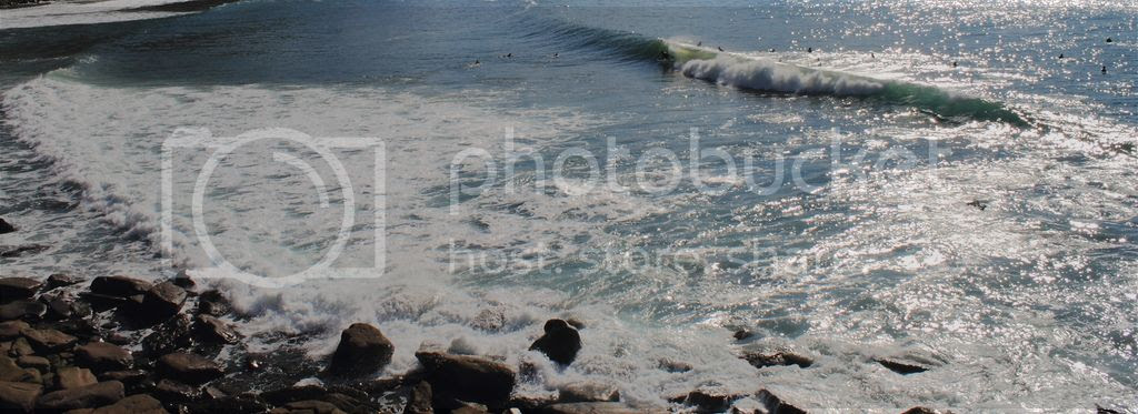 photo 5_8.jpg