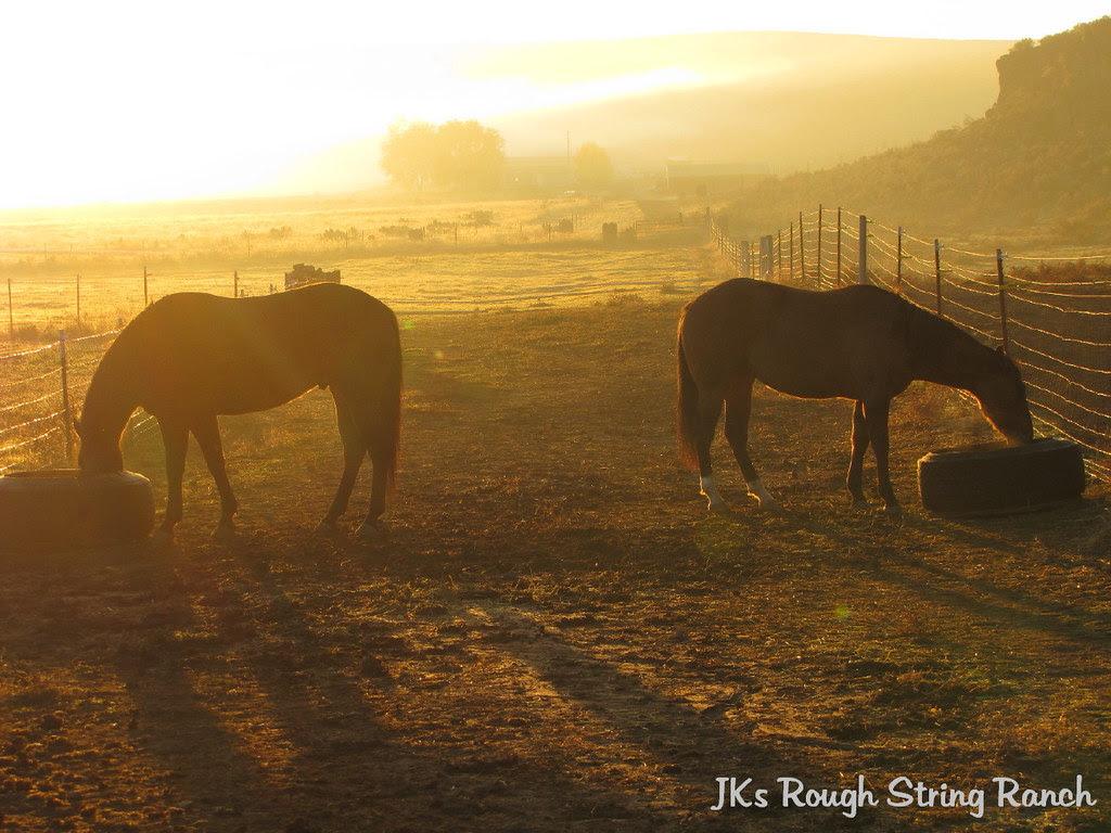 Hazey Fall Mornin'