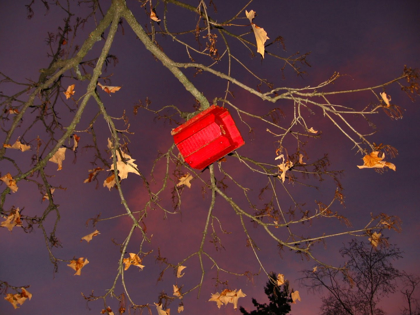 Red Bird House at Sunset - Wiconsin Autumn Photo - soul-amp.com