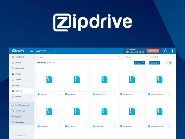 ZipDrive Basic Plan: 10-Yr Subscription for $19
