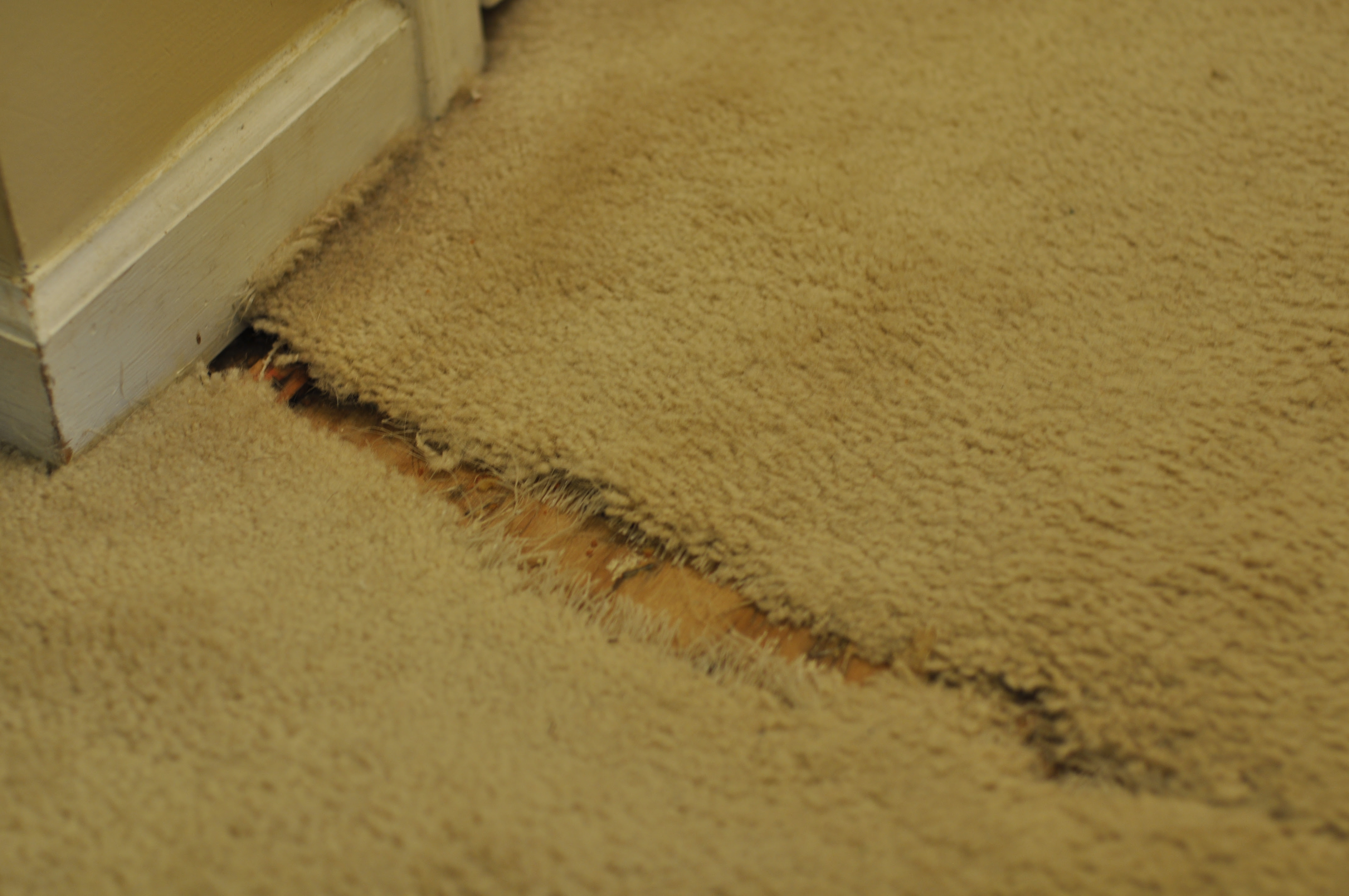 What Does Asbestos In Carpet Padding