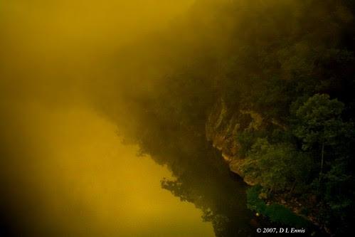 Misty River Morn
