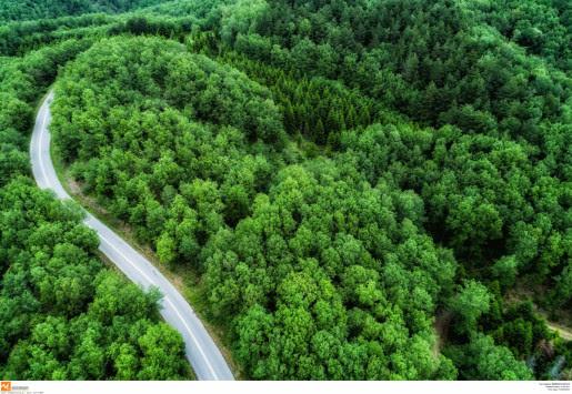 Δασικοί χάρτες: Έρχεται νεα παράταση - Τι αναφέρει η νεα τροπολογία
