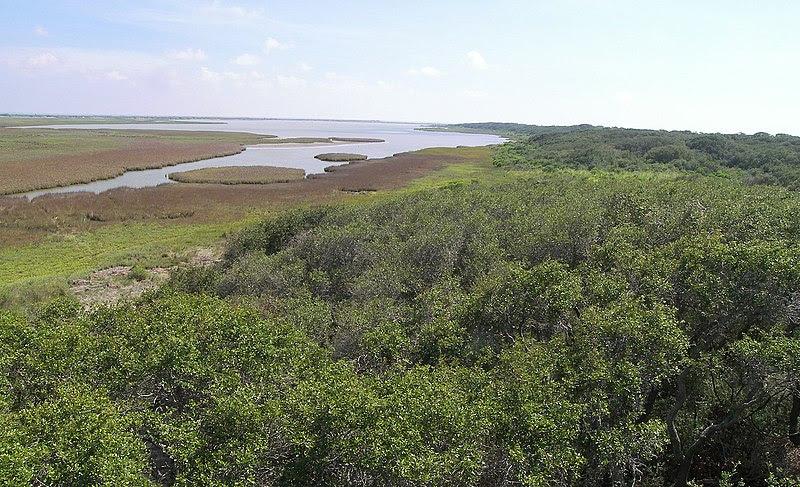 File:Aransas national wildlife refuge1.jpg