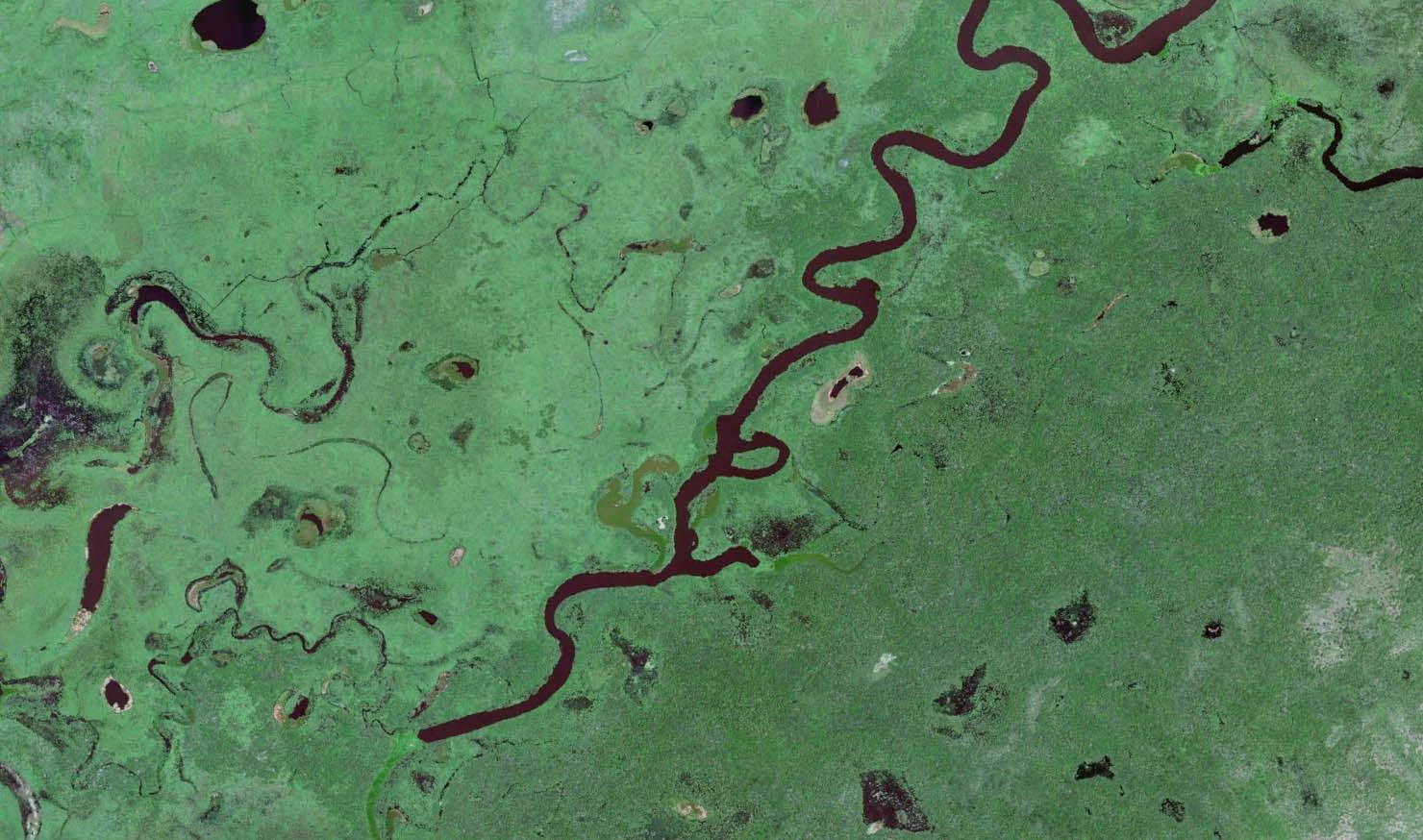 Reserva Particular do Patrimônio Natural SESC Pantanal