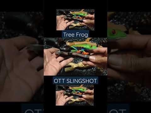 Tree Frog Slingshot, Hen Slingshot Shooting Sports Indonesia