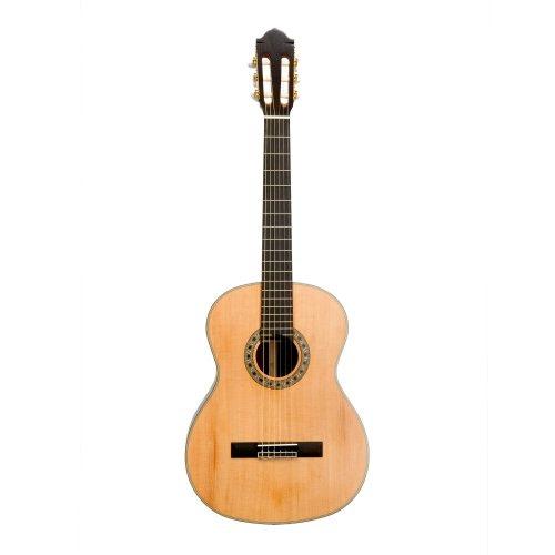 Guitares classiques guitare classique par simpsons guitars avec 20mm housse rembourr e 4 4 - Guitare simpson ...