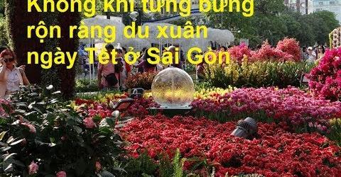 Không khí tưng bừng rộn ràng du xuân ngày Tết ở Sài Gòn