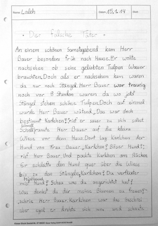 Eine Bildergeschichte aus der Klasse 4a - Robert-Koch ...