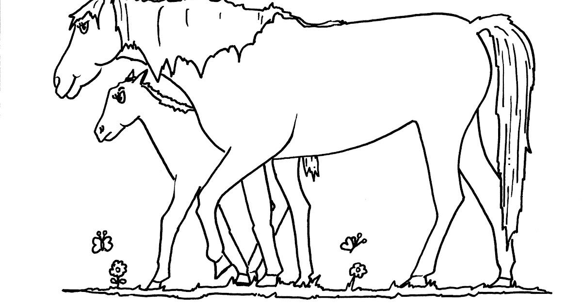 ausmalbilder pferde online ausmalen   top kostenlos