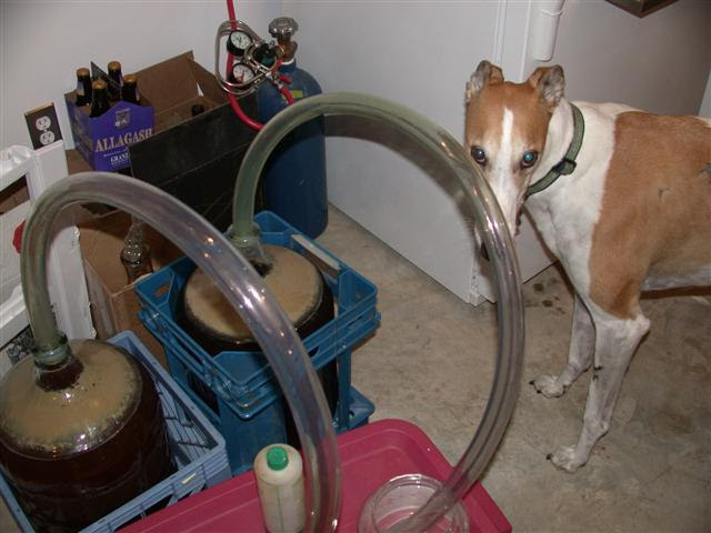 Image result for carboy milk crate