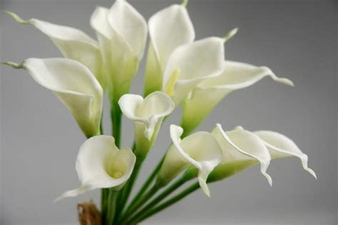 "Mini Real Touch Calla Lily Wedding Bouquet in White  14"" Tall"