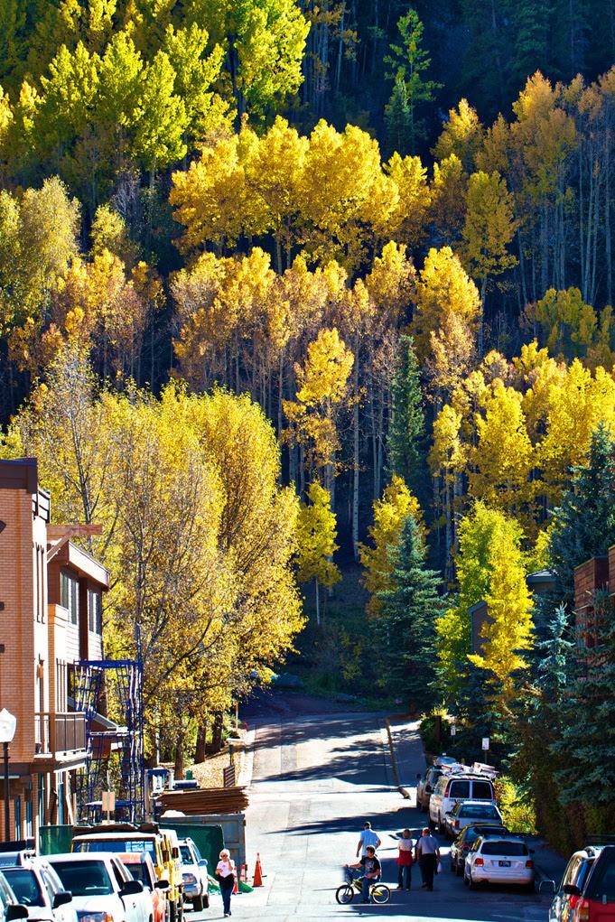 Telluride Colorado Marla Meridith Photography-IMG_6073