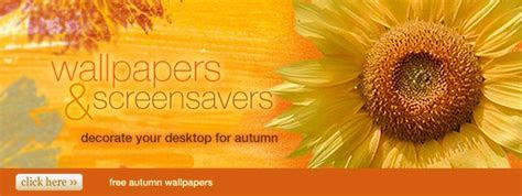 Free Wallpapers & Screensavers at American Greetings