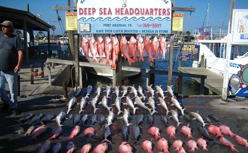 Corpus christi offshore fish for Deep sea fishing dana point