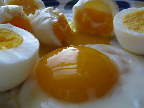 eggs Weight Loss & Breakfast: Eggs are Better