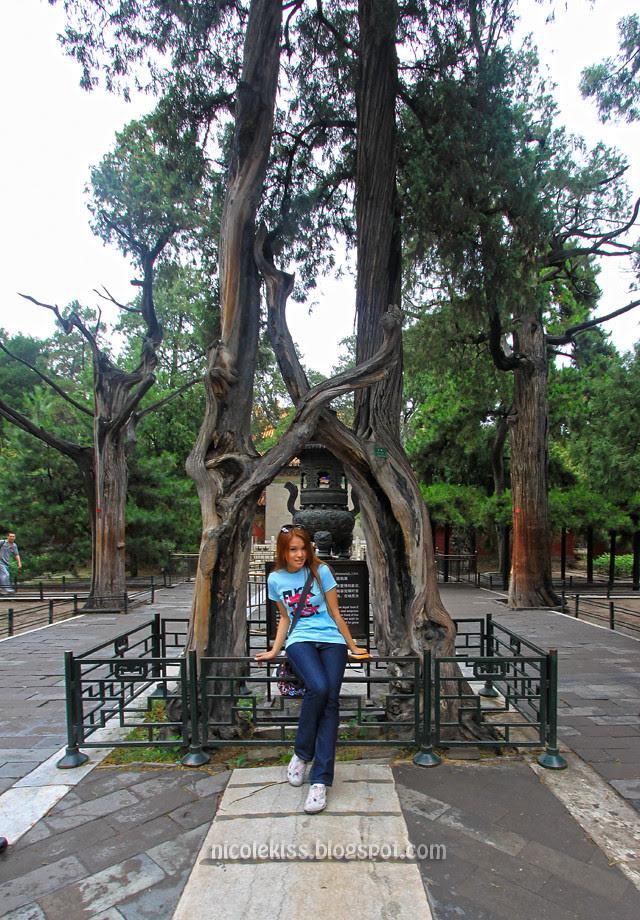 Nicolekiss at Imperial Garden, Forbidden City, Beijing