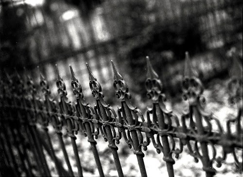 Wrought Iron Fence by Steve Snodgrass