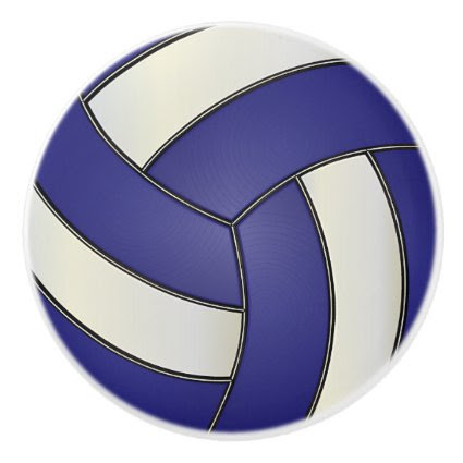 Dark Blue and White Volleyball Ceramic Knob