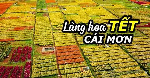 Khoai Lang Thang về quê ăn Tết | Du lịch làng hoa Cái Mơn Bến Tre