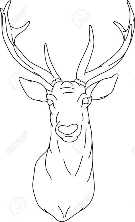 draw  deer head google search   draw