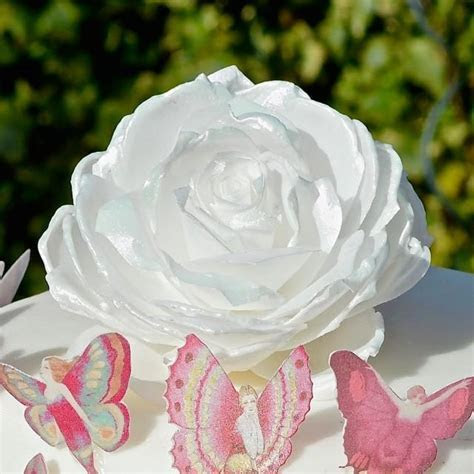 Edible Rose Iridescent Pink White Soft Sheen Wafer Rice