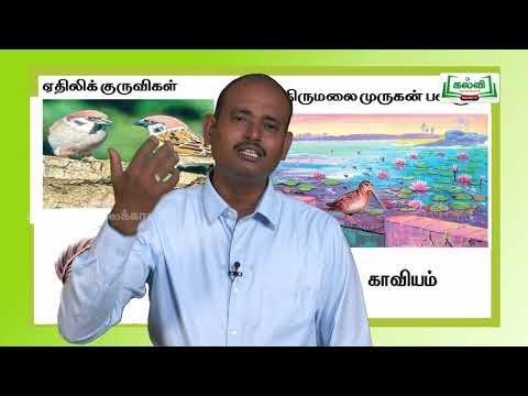 யாமறிந்த மொழிகளிலே Std 11 தமிழ் ஏதிலிக் குருவிகள் Kalvi TV