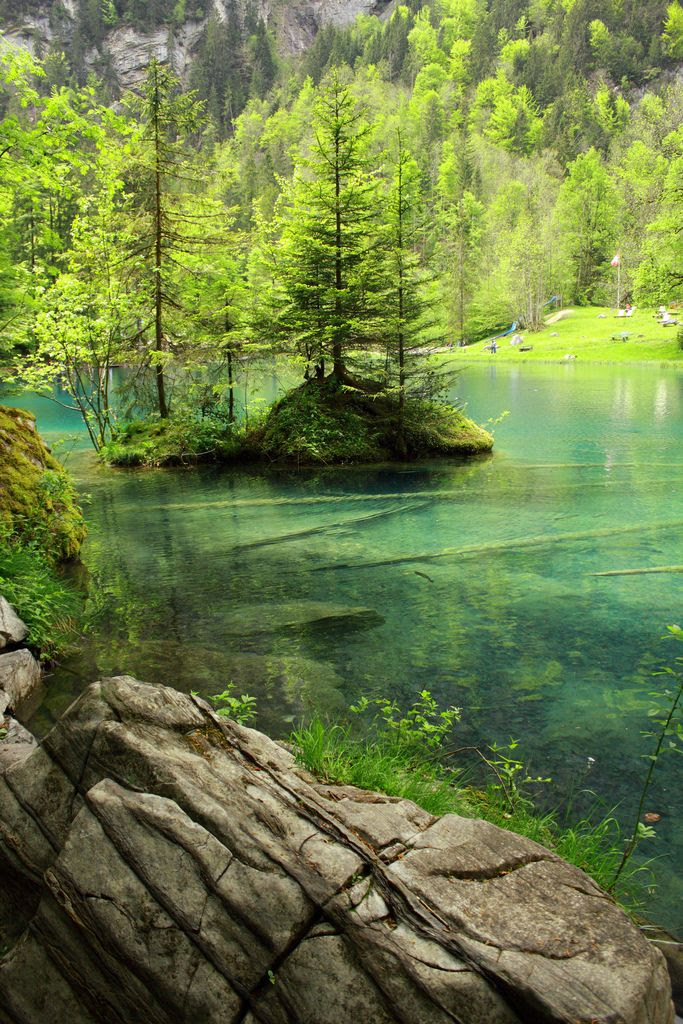 Blausee, Switzerland | beautiful pictures of nature | green trees | river | rocks | green | amazing