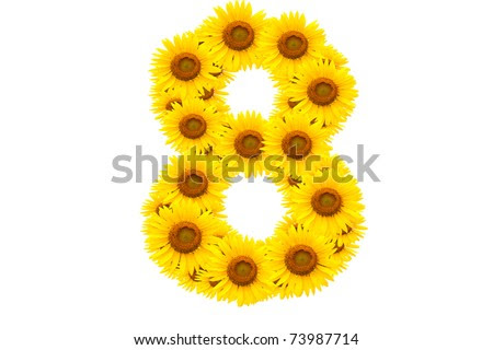 Alphabet V Sunflower Isolated On White Stock Photo ...