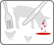 icône viande.info représentant la souffrance animale