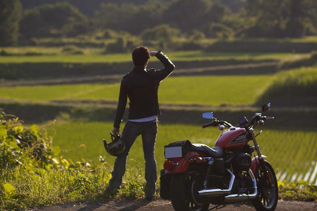 Harley Davidson XL 883R 063