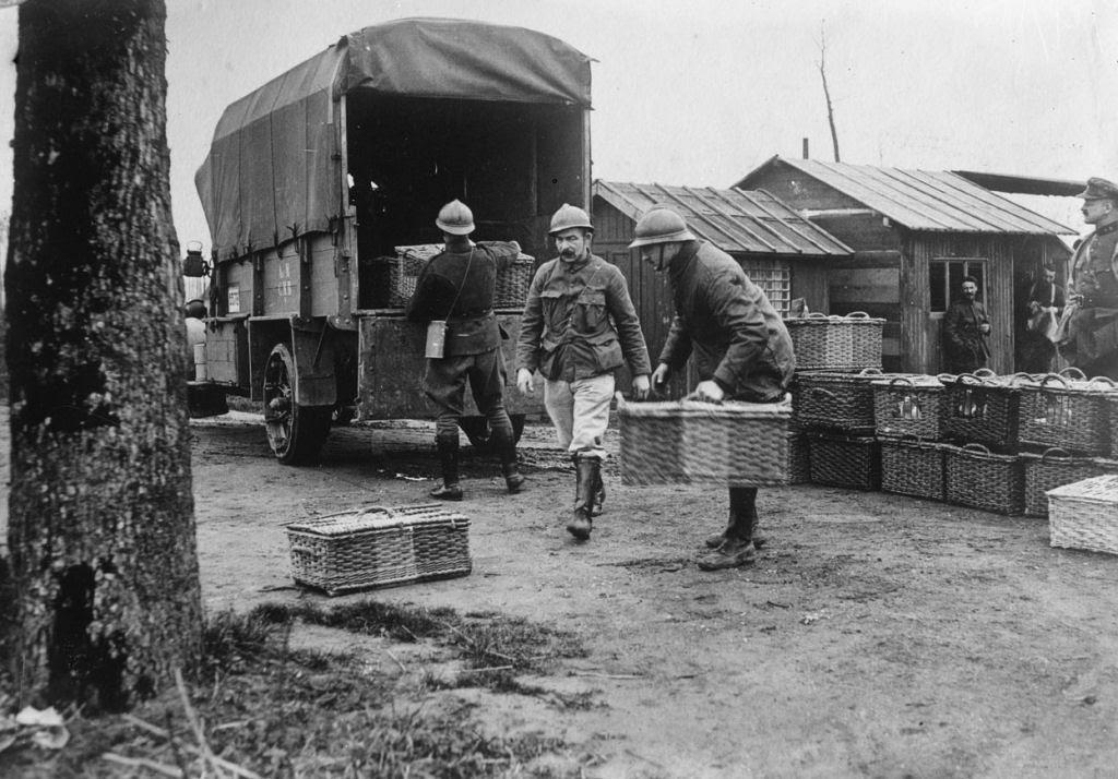 Os animais também lutaram na Primeira Guerra Mundial 16