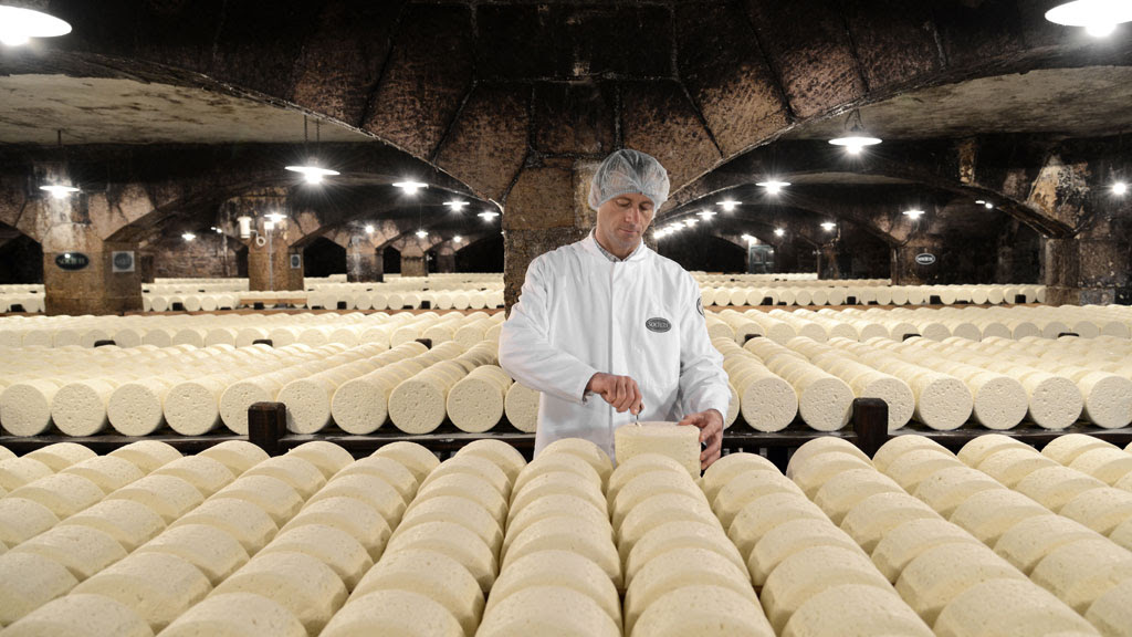 Loucos por queijos