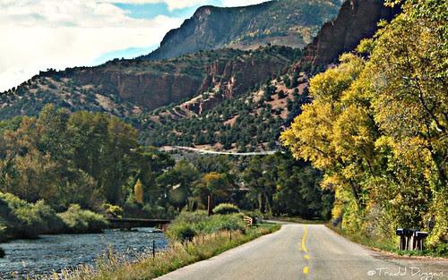 fall-road