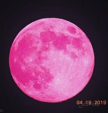 오늘 핑크문 뜨는 밤 핑크색 머리한 아이돌 | 인스티즈