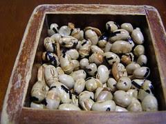 Setsubun Roasted Beans