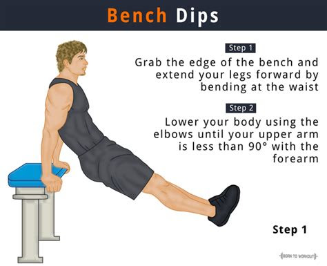bench dips tricep dips       muscles