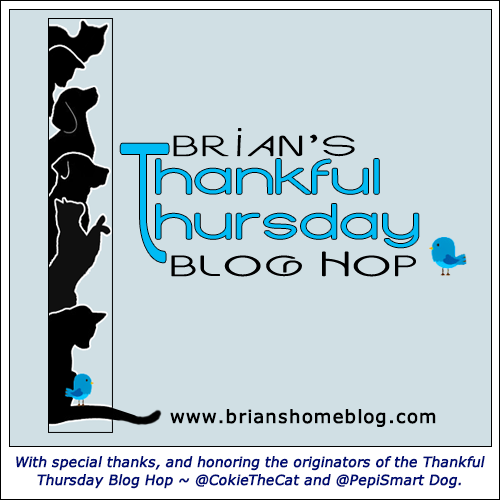 Thankful Thursday Blog Hop