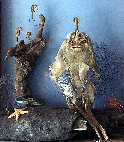 The Zymoglyphic Mermaid