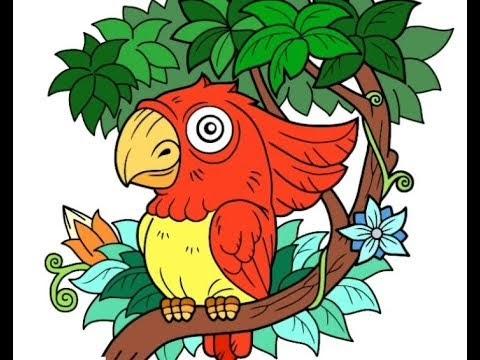 20 Cara Menggambar Burung Diatas Pohon