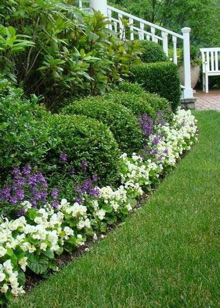 Best 6 Zone 8 Perennials Garden Ideas | Saul Fitgerald