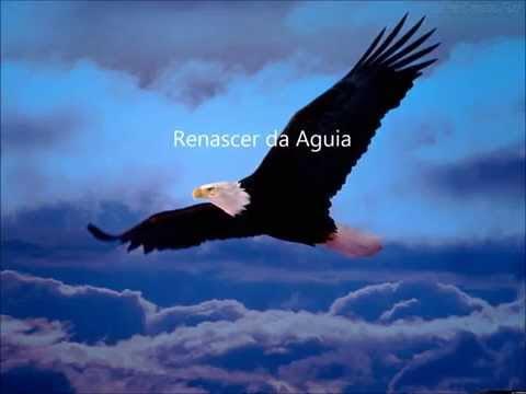 Renascer da Águia -Victoria Nasser