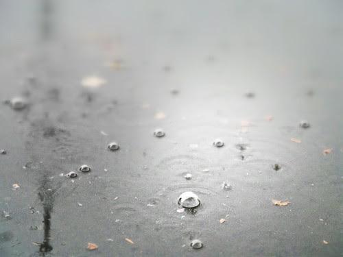 Bolle di pioggia sull'asfalto by Ylbert Durishti